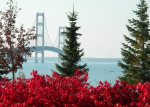 UP NORTH, the Mackinac Bridge in Fall